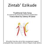 Zintab' Ezikude