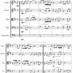 Theme and Variations From Trout  by Franz Schubert